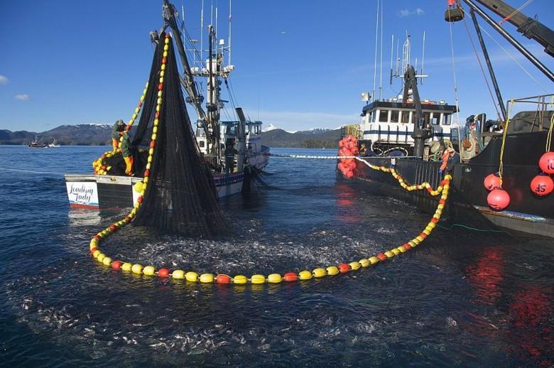 Lgov du domaine de Koursk la pêche